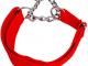 kalung anjing nilon